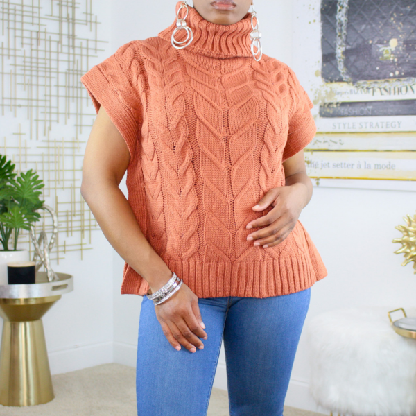 sleeveless turtleneck knit sweater